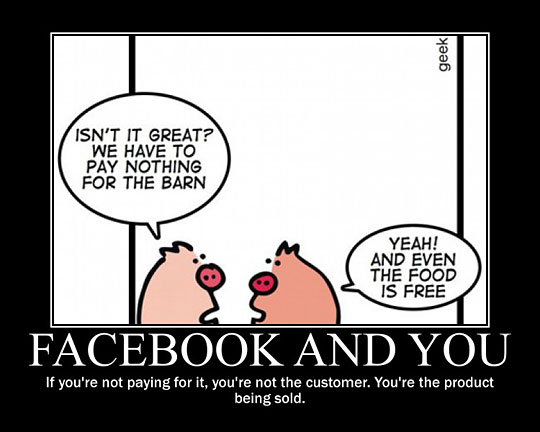 funny-Facebook-pigs-talking