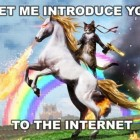 "When Trolls Attack: Hunting the ""Kinder, Gentler"" Internet Unicorn"