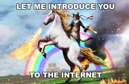 Unicorn-lolcat-introduce-on-the-internet